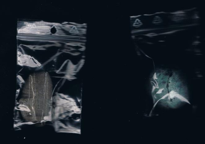 la-caravane-curieuse-scans-2